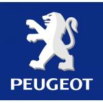 Kadosan Peugeot Oto Yedek Parça